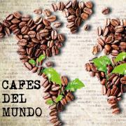 Compra los Mejores CAFÉS del MUNDO Naturales Al Mejor Precio